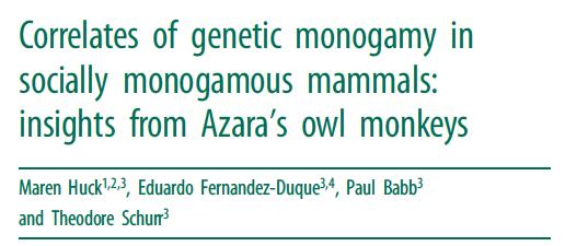 GeneticMonogamy